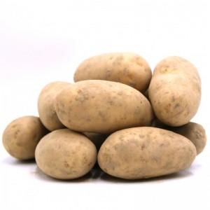 Pommes de terre Charlotte (1 kg)