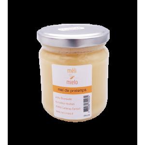 Miel de printemps (250g)