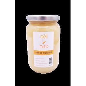Miel de printemps (500g)