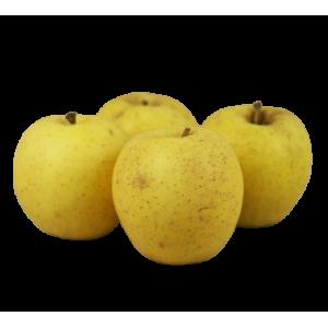 Pomme goldrush (1 kg)