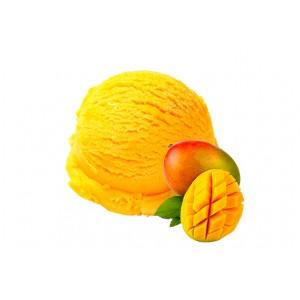 Sorbet Mangue Bio (250g)