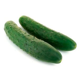 Concombre court variété ancienne (la pièce)