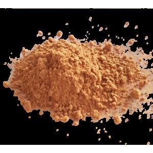 Cacao en poudre (100g)