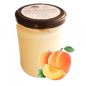 Yaourt brassé abricot (500g)