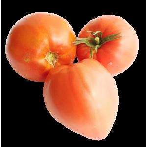 Tomates anciennes cœur de boeuf (1 kg)